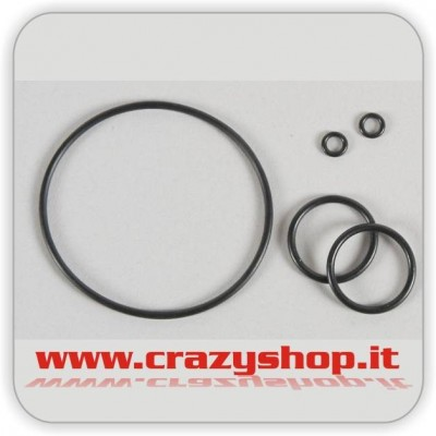 FG Set O-Ring per Differenziale Viscoso