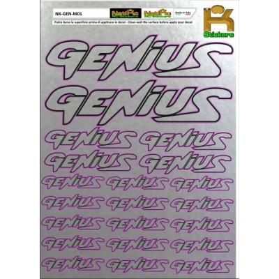 Logo Sponsor Chrome GENIUS