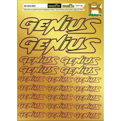 Logo Sponsor Chrome GENIUS